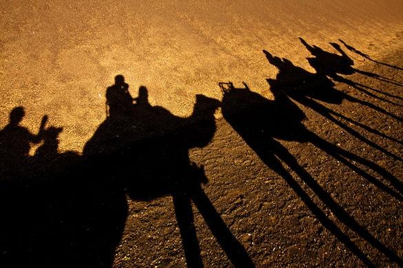Camel Expedition Lanzarote, Ernest Figueras