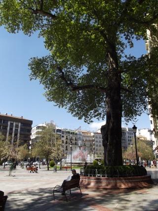 Plaza del Campillo, Granada, Spain