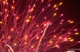 Tokyo, summer fireworks, Japan